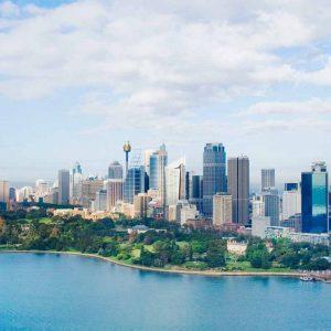 Cultural Marketing Agency Sydney marzipan media